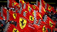 Hondu u Sauberu nahradí motory a převodovky Ferrari - anotační foto