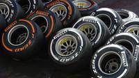 Dodavatele pneumatik si vybere Ecclestone