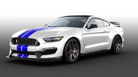 Jedinečný Mustang Shelby míří do aukce - anotační foto