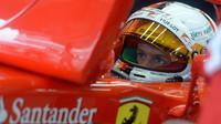 Sebastian Vettel v Suzuce