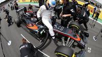 Fernando Alonso se připravuje na startovním roštu v Brazílii