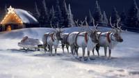 Jadna z možných variant vánočního spřežení Mercedesu