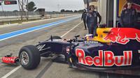 Daniel Ricciardo s Red Bullem RB11