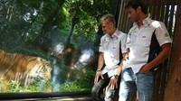 Marcus Ericson a Felipe Nasr v Melbourne