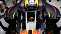 Ochrana kokpitu vozu v podání Red Bullu
