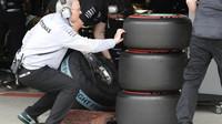 Kontrola pneumatik při kvalifikaci v Soči