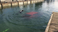 Utopená Toyota Yaris a špatná navigace