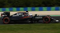 Fernando Alonso při sobotní deštivé kvalifikaci v Maďarsku