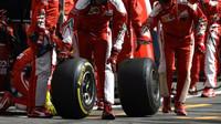 Mechanici Ferrari v závodě v Belgii