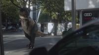 VIDEO: Geniální reklama Audi. Po jejím zhlédnutí budete chtít autonomní řízení - anotační obrázek