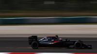 Jenson Button jiskří při pátečním tréninku v Malajsii