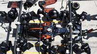Fernando Alonso v závodě v Malajsii