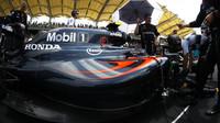Jenson Button před závodem v Malajsii