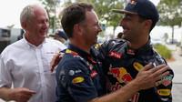 Helmut Marko, Christian Horner a Daniel Ricciardo v Malajsii