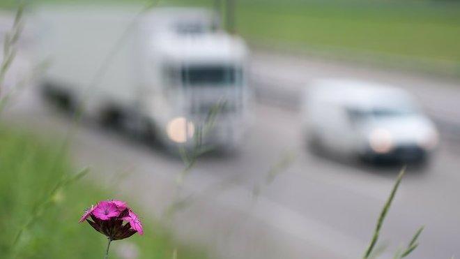 Kamiony jsou čistější než osobáky! Čtěte - anotační foto