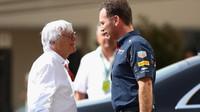 Bernie Ecclestone a Christan Horner v Abú Zabí