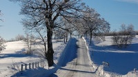 Namrzlé silnice
