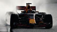 Max Verstappen za deště