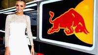 Jaká je situace u Red Bullu? Tým své slabiny dobře zná - anotační obrázek