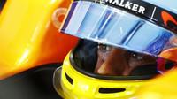 Může se stát, že Alonso od McLarenu odjede již v průběhu letoška, tvrdí Webber - anotační foto