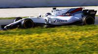 Lance Stroll s vozem Williams FW40
