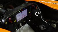 Volant vozu McLaren MCL32 - Honda při tréninku v Bahrajnu
