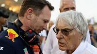 Christian Horner a Bernie Ecclestone před závodem v Bahrajnu