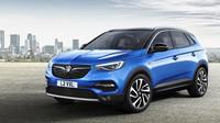 Na autosalonu ve Frankfurtu by se měl mimo jiné představit Opel Grandland X