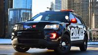 Spoutaný muž ukradl policejní auto, ve kterém byl zavřený. Jeho jízda nemohla skončit jinak - anotační obrázek