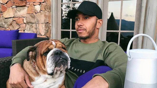 Lewis Hamilton se svým bulldogem Roscoem