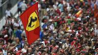 Fanoušci Ferrari v Itálii