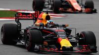 Daniel Ricciardo v závodě v Malajsii