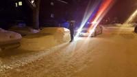 Policisté chtěli Supru ze sněhu nejdříve pokutovat, pak se ale vtípku zasmáli