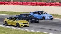 Záběry z minulých srazů majitelů automobilů BMW M