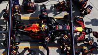 Daniel Ricciardo při výměně pneumatik