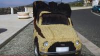 Tento Fiat 500 se stal nejvlasatějším autem světa