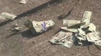 Z obrněné dodávky bezpečnostní agentury vylétly na dálnici tisíce dolarů