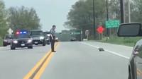 Policista vyřešil problém se svištěm na silnici skutečně kontroverzně