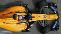 Fernando Alonso v tréninku v Monaku