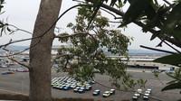 Zástupci nové generace Suzuki Jimny již čekají na expedici do světa
