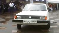 Nyayo Pioneer