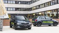 Během pilotní fáze si mohou studenti v Praze pronajmout jeden z 15 vozů Škoda Fabia Style