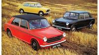 Austin 1100 & 1300 v různých provedeních