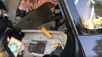 Medvěd uvězněný v Subaru po sobě zanechal pořádnou paseku