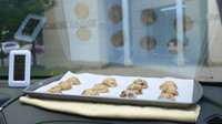 Experiment webu AutoBlog ověřoval, zda se dají za čelním sklem upéct domácí sušenky