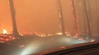 Turisté natočili průjezd lesním požárem, z těchto záběrů vám bude pořádně horko - anotační obrázek