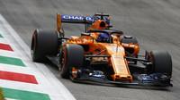 Fernando Alonso při pátečním tréninku na Monze