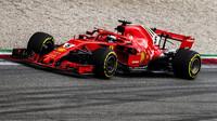Sebastian Vettel se svým Ferrari
