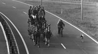 Záběry z nizozemských silnic a dálnic během ropné krize v roce 1973