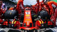 Sebastian Vettel před závodem v Brazílii
